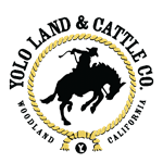 Yolo Land and Cattle logo